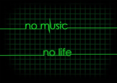 1237315024_no-music-no-life-by-bam