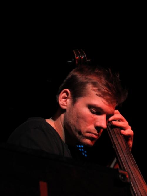 Joe Pug's bassist