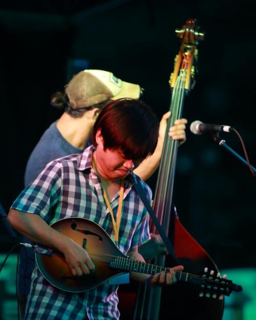 HDATZ mandolin player