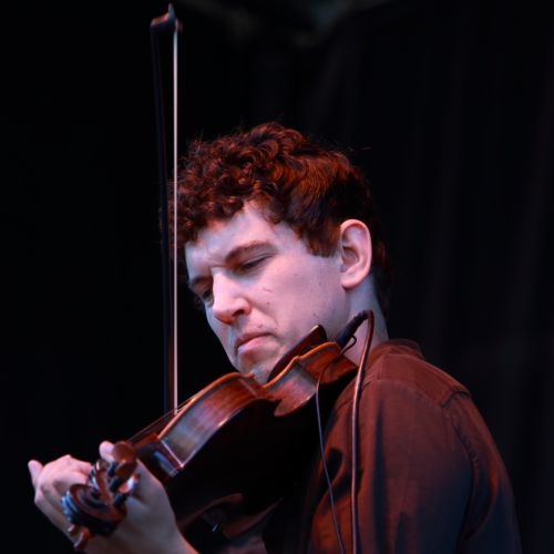 Alison Brown's Fiddle Player