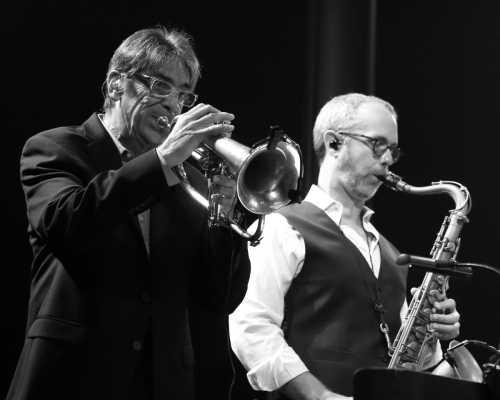 The Mavericks' trumpet and sax players